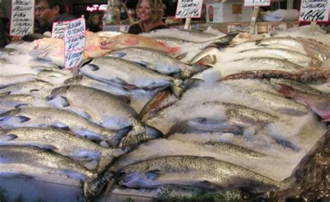 Purchasing Fish And Seafood, Whats Cooking America