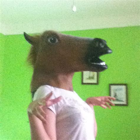 Horse mask gif 18 » GIF Images Download