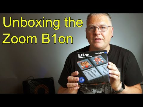 B1Xon Bass Effects Pedal with Expression Pedal | Zoom